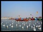 Allahabad Sangam